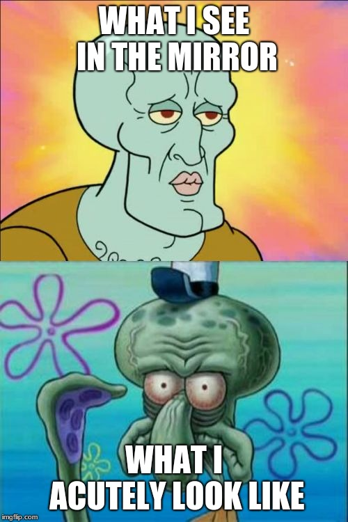 Squidward Meme | WHAT I SEE IN THE MIRROR WHAT I ACUTELY LOOK LIKE | image tagged in memes,squidward | made w/ Imgflip meme maker