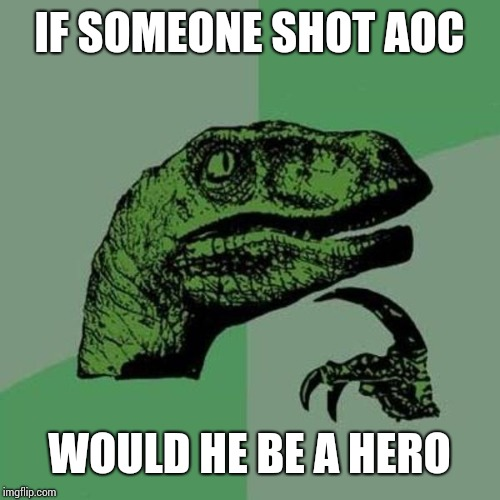 raptor | IF SOMEONE SHOT AOC WOULD HE BE A HERO | image tagged in raptor | made w/ Imgflip meme maker