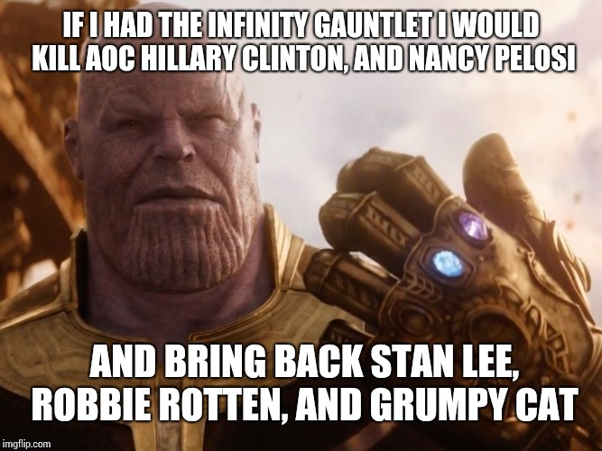 Thanos Smile | IF I HAD THE INFINITY GAUNTLET I WOULD KILL AOC HILLARY CLINTON, AND NANCY PELOSI AND BRING BACK STAN LEE, ROBBIE ROTTEN, AND GRUMPY CAT | image tagged in thanos smile | made w/ Imgflip meme maker
