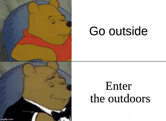 Tuxedo Winnie The Pooh Meme | Go outside Enter the outdoors | image tagged in memes,tuxedo winnie the pooh | made w/ Imgflip meme maker