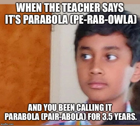 WHEN THE TEACHER SAYS IT'S PARABOLA (PE-RAB-OWLA) AND YOU BEEN CALLING IT PARABOLA (PAIR-ABOLA) FOR 3.5 YEARS. | image tagged in please help me | made w/ Imgflip meme maker