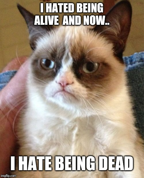 Grumpy Cat Meme | I HATED BEING ALIVE  AND NOW.. I HATE BEING DEAD | image tagged in memes,grumpy cat | made w/ Imgflip meme maker