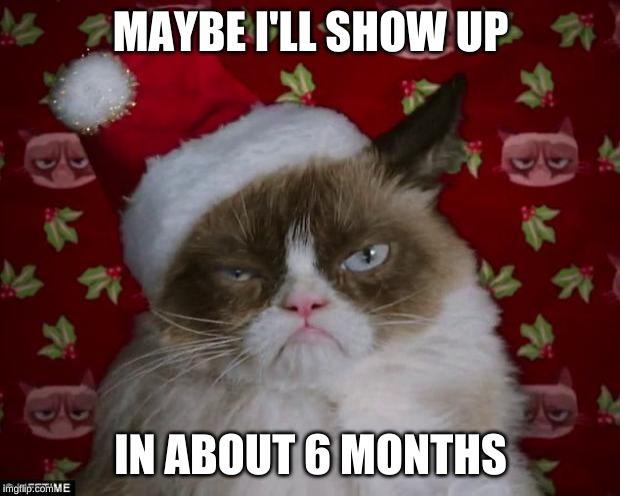 Grumpy Cat Christmas | MAYBE I'LL SHOW UP IN ABOUT 6 MONTHS | image tagged in grumpy cat christmas | made w/ Imgflip meme maker