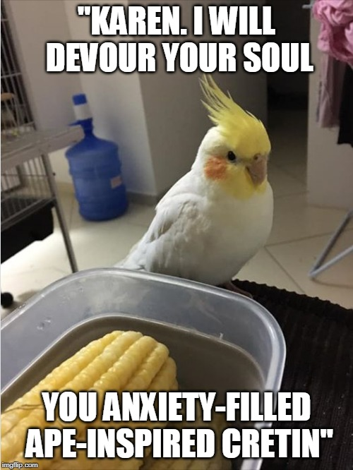 "Bird talk | ""KAREN. I WILL DEVOUR YOUR SOUL YOU ANXIETY-FILLED APE-INSPIRED CRETIN"" 