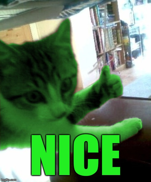 thumbs up RayCat | NICE | image tagged in thumbs up raycat | made w/ Imgflip meme maker