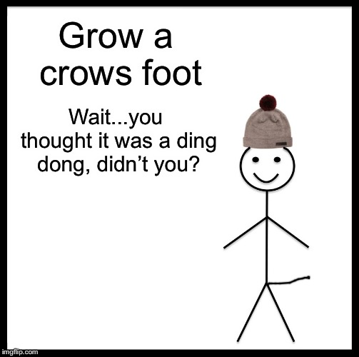 Be Like Bill Meme |  Grow a crows foot; Wait...you thought it was a ding dong, didn't you? | image tagged in memes,be like bill | made w/ Imgflip meme maker
