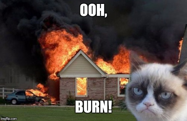 Burn Kitty Meme | OOH, BURN! | image tagged in memes,burn kitty,grumpy cat | made w/ Imgflip meme maker