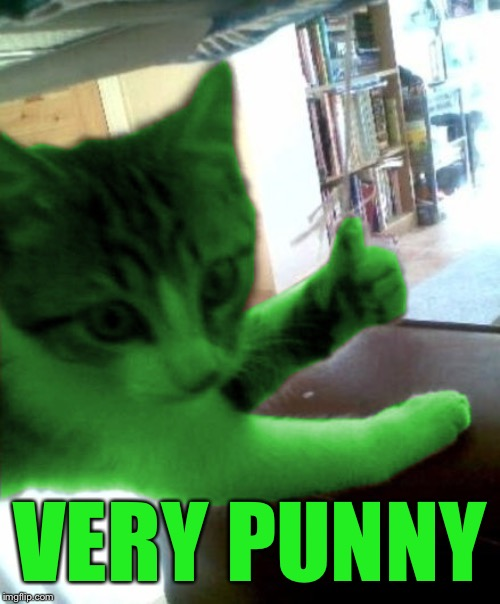 thumbs up RayCat | VERY PUNNY | image tagged in thumbs up raycat | made w/ Imgflip meme maker