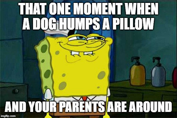 Dont You Squidward Meme | THAT ONE MOMENT WHEN A DOG HUMPS A PILLOW AND YOUR PARENTS ARE AROUND | image tagged in memes,dont you squidward | made w/ Imgflip meme maker