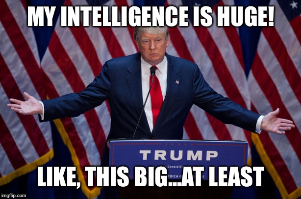 Donald Trump | MY INTELLIGENCE IS HUGE! LIKE, THIS BIG...AT LEAST | image tagged in donald trump | made w/ Imgflip meme maker