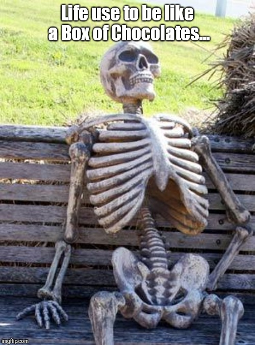 Waiting Skeleton | Life use to be like a Box of Chocolates... | image tagged in memes,waiting skeleton | made w/ Imgflip meme maker