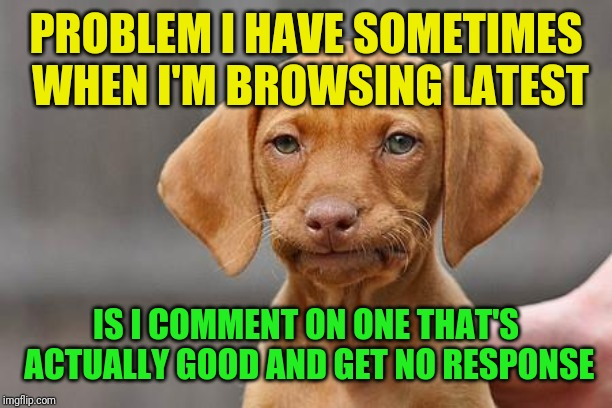 Dissapointed puppy | PROBLEM I HAVE SOMETIMES WHEN I'M BROWSING LATEST IS I COMMENT ON ONE THAT'S ACTUALLY GOOD AND GET NO RESPONSE | image tagged in dissapointed puppy | made w/ Imgflip meme maker