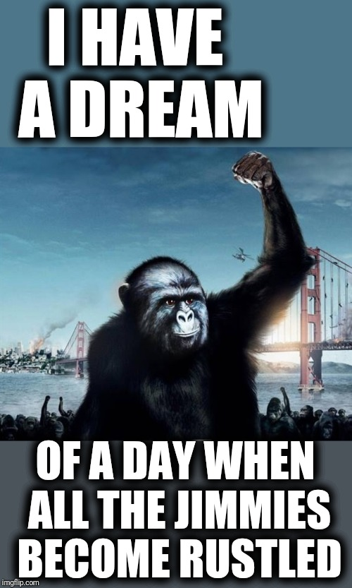 I HAVE A DREAM OF A DAY WHEN ALL THE JIMMIES BECOME RUSTLED | made w/ Imgflip meme maker