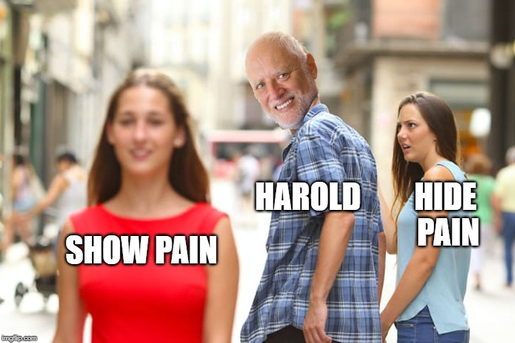 Distracted Harold | SHOW PAIN HAROLD HIDE PAIN | image tagged in memes,distracted boyfriend,funny,harold,hide the pain harold | made w/ Imgflip meme maker