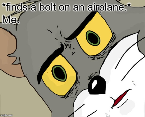 Unsettled Tom Meme | *finds a bolt on an airplane.* Me. | image tagged in memes,unsettled tom | made w/ Imgflip meme maker