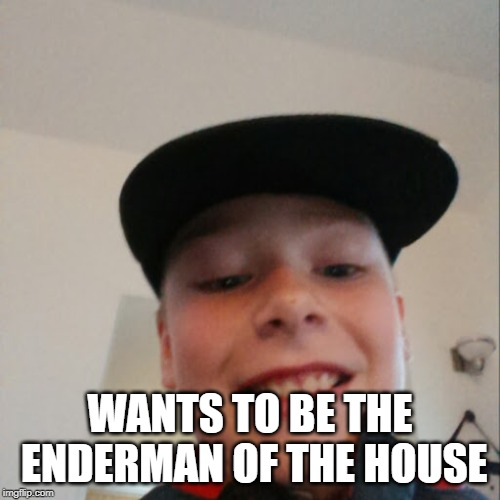 aidan |  WANTS TO BE THE ENDERMAN OF THE HOUSE | image tagged in aidan | made w/ Imgflip meme maker