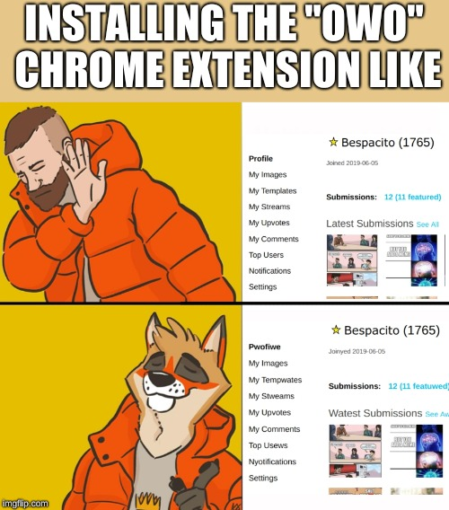 "It exists and I like it | INSTALLING THE ""OWO"" CHROME EXTENSION LIKE 