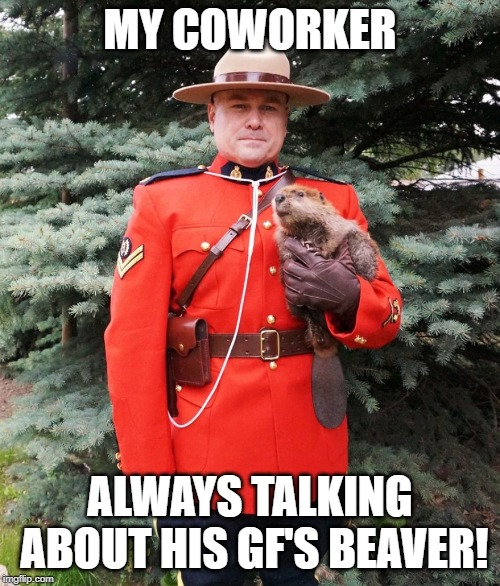 MY COWORKER ALWAYS TALKING ABOUT HIS GF'S BEAVER! | image tagged in mountie beaver | made w/ Imgflip meme maker