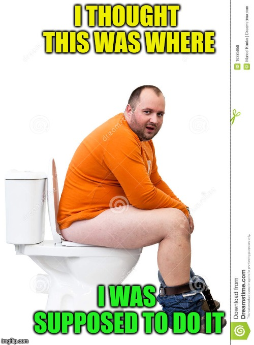 Man on toilet | I THOUGHT THIS WAS WHERE I WAS SUPPOSED TO DO IT | image tagged in man on toilet | made w/ Imgflip meme maker