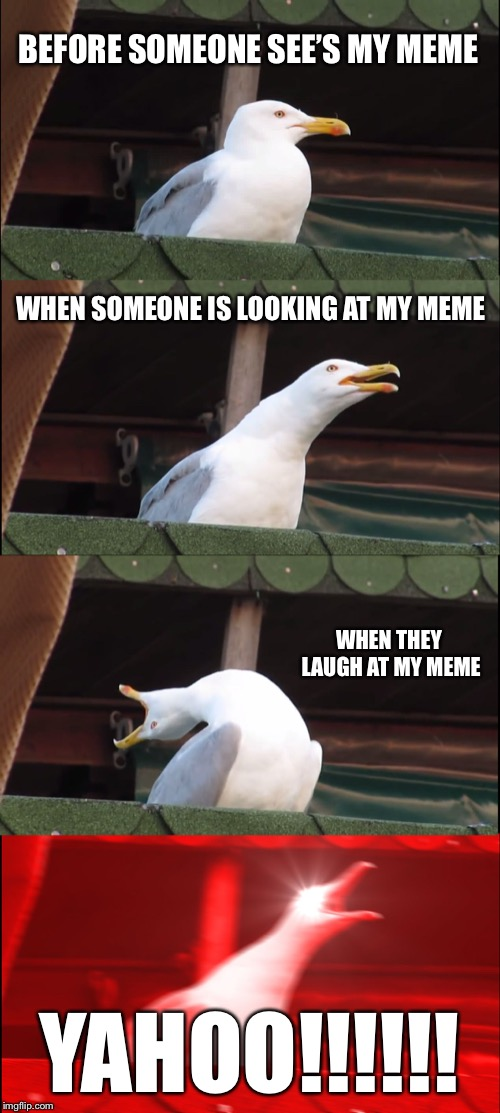 Inhaling Seagull Meme | BEFORE SOMEONE SEE'S MY MEME WHEN SOMEONE IS LOOKING AT MY MEME WHEN THEY LAUGH AT MY MEME YAHOO!!!!!! | image tagged in memes,inhaling seagull | made w/ Imgflip meme maker