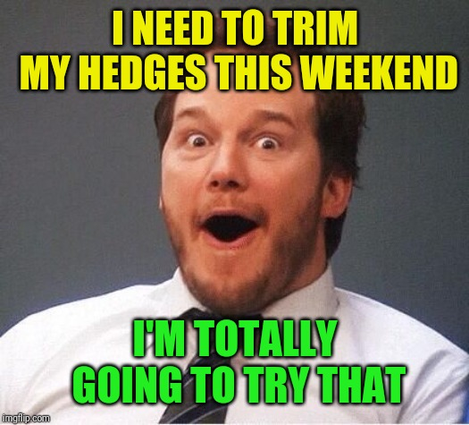 excited | I NEED TO TRIM MY HEDGES THIS WEEKEND I'M TOTALLY GOING TO TRY THAT | image tagged in excited | made w/ Imgflip meme maker