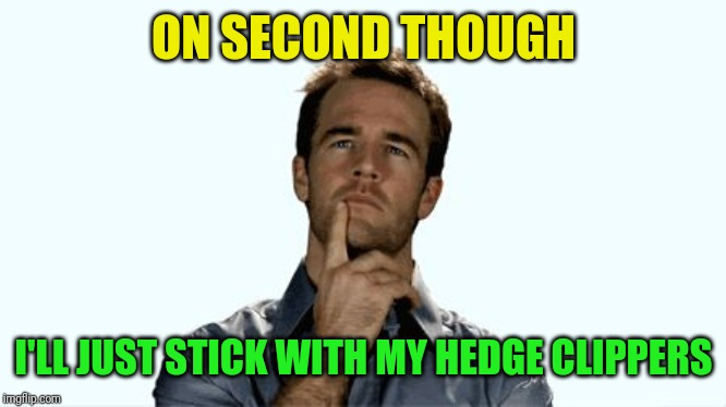 Hmmm | ON SECOND THOUGH I'LL JUST STICK WITH MY HEDGE CLIPPERS | image tagged in hmmm | made w/ Imgflip meme maker
