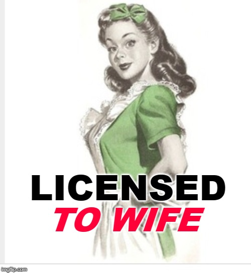Licensed to Wife | LICENSED TO WIFE | image tagged in 50's housewife,funny memes,marriage,mashup,movies,wife | made w/ Imgflip meme maker