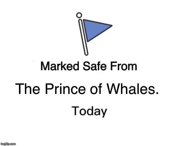 Marked Safe From Meme | The Prince of Whales. | image tagged in memes,marked safe from | made w/ Imgflip meme maker