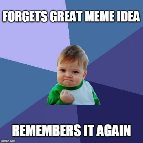 :-) |  FORGETS GREAT MEME IDEA; REMEMBERS IT AGAIN | image tagged in memes,success kid | made w/ Imgflip meme maker