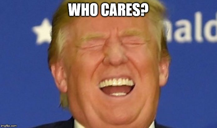 Trump laughing | WHO CARES? | image tagged in trump laughing | made w/ Imgflip meme maker