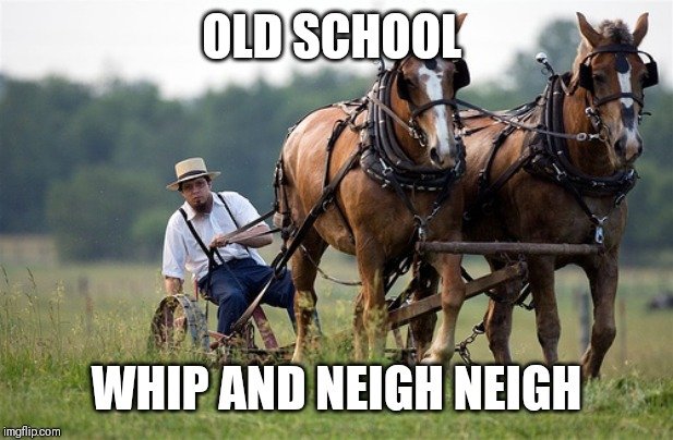 Amish farmer | OLD SCHOOL WHIP AND NEIGH NEIGH | image tagged in amish farmer | made w/ Imgflip meme maker