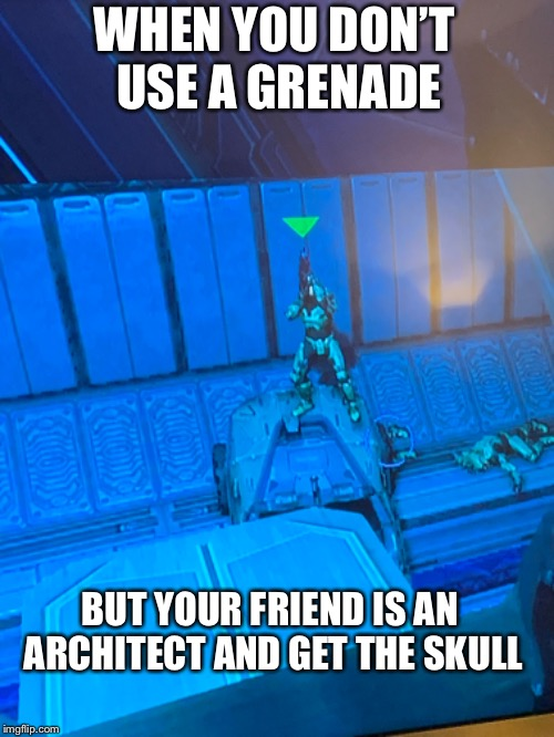 WHEN YOU DON'T USE A GRENADE BUT YOUR FRIEND IS AN ARCHITECT AND GET THE SKULL | image tagged in gaming | made w/ Imgflip meme maker