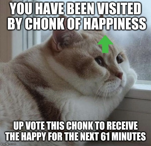 YOU HAVE BEEN VISITED BY CHONK OF HAPPINESS UP VOTE THIS CHONK TO RECEIVE THE HAPPY FOR THE NEXT 61 MINUTES | image tagged in solemn chonk | made w/ Imgflip meme maker