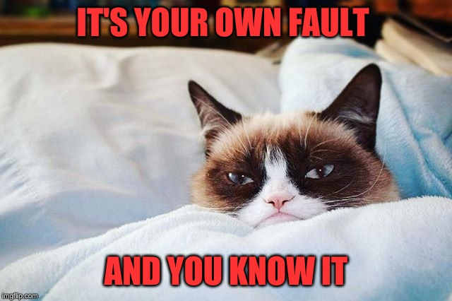 grumpy cat bed | IT'S YOUR OWN FAULT AND YOU KNOW IT | image tagged in grumpy cat bed | made w/ Imgflip meme maker