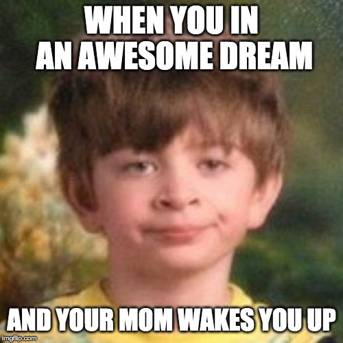 Annoyed face |  WHEN YOU IN AN AWESOME DREAM; AND YOUR MOM WAKES YOU UP | image tagged in annoyed face | made w/ Imgflip meme maker