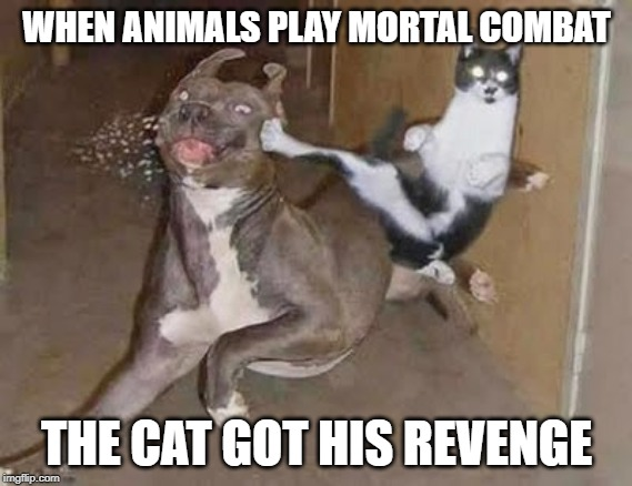 GET REKT | WHEN ANIMALS PLAY MORTAL COMBAT THE CAT GOT HIS REVENGE | image tagged in get rekt | made w/ Imgflip meme maker