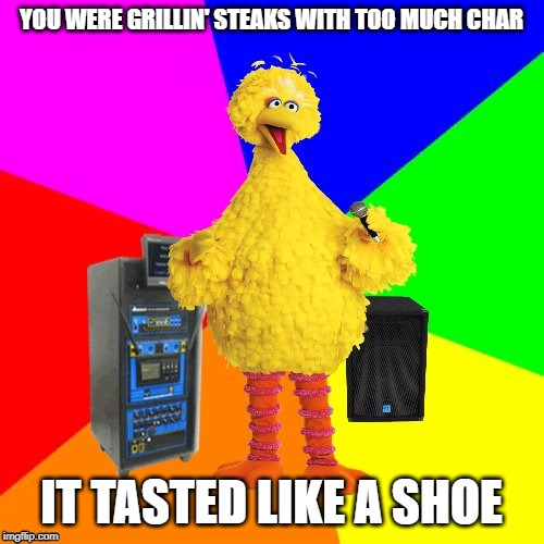 Wrong lyrics karaoke big bird | YOU WERE GRILLIN' STEAKS WITH TOO MUCH CHAR IT TASTED LIKE A SHOE | image tagged in wrong lyrics karaoke big bird | made w/ Imgflip meme maker