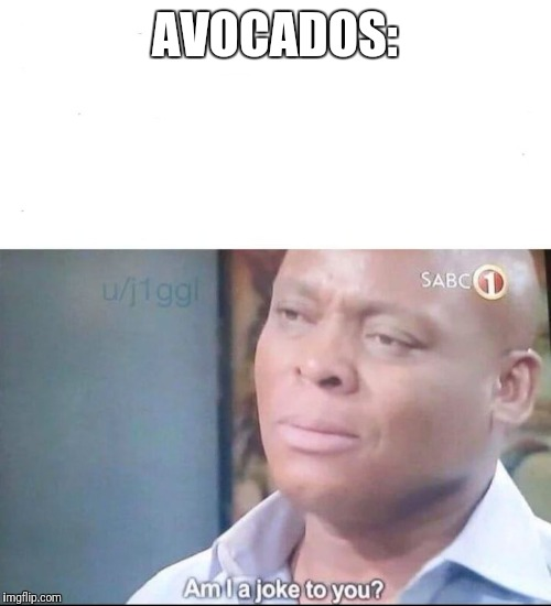 AVOCADOS: | image tagged in am i a joke to you | made w/ Imgflip meme maker