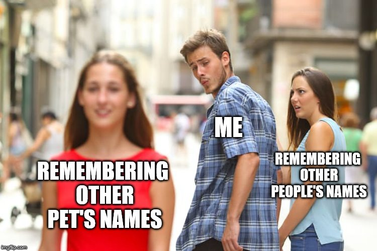 Distracted Boyfriend | REMEMBERING OTHER PET'S NAMES ME REMEMBERING OTHER PEOPLE'S NAMES | image tagged in memes,distracted boyfriend,funny meme,pets,so true meme | made w/ Imgflip meme maker