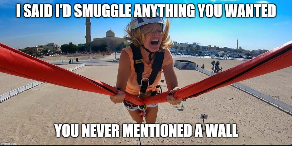 Details | I SAID I'D SMUGGLE ANYTHING YOU WANTED YOU NEVER MENTIONED A WALL | image tagged in border wall,secure the border,illegal immigration,fence aka border wall,border patrol,build the wall | made w/ Imgflip meme maker