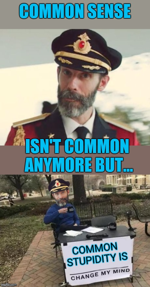 It's pretty common nowadays ;) | COMMON SENSE ISN'T COMMON ANYMORE BUT... COMMON STUPIDITY IS | image tagged in captain obvious,common sense,common stupidity,44colt,memes,like it or not it's the truth | made w/ Imgflip meme maker