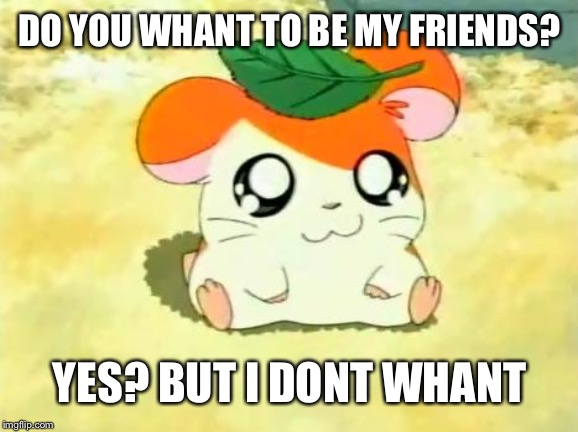 Hamtaro |  DO YOU WHANT TO BE MY FRIENDS? YES? BUT I DONT WHANT | image tagged in memes,hamtaro | made w/ Imgflip meme maker