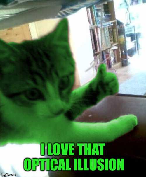 thumbs up RayCat | I LOVE THAT OPTICAL ILLUSION | image tagged in thumbs up raycat | made w/ Imgflip meme maker