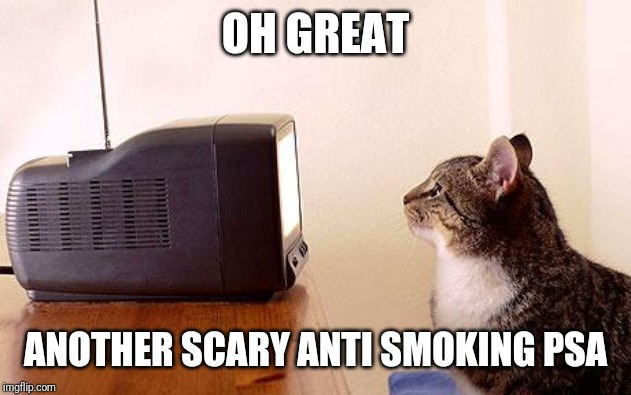 cat watching tv | OH GREAT ANOTHER SCARY ANTI SMOKING PSA | image tagged in cat watching tv | made w/ Imgflip meme maker