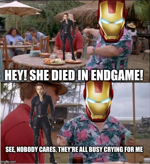 too true though. haven't uploaded in a while, back now dont worry ;) | HEY! SHE DIED IN ENDGAME! SEE, NOBODY CARES, THEY'RE ALL BUSY CRYING FOR ME | image tagged in memes,see nobody cares,avengers endgame,iron man,black widow | made w/ Imgflip meme maker
