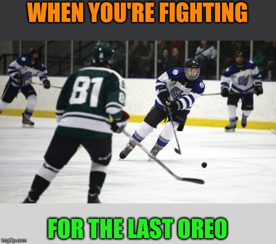 Maybe I should take up sports... |  WHEN YOU'RE FIGHTING; FOR THE LAST OREO | image tagged in memes,ice hockey,oreo,yall got any more of,give that man a cookie,giveuahint | made w/ Imgflip meme maker