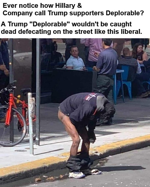 "Now THIS is Deplorable | Ever notice how Hillary & Company call Trump supporters Deplorable? A Trump ""Deplorable"" wouldn't be caught dead defecating on the street li 