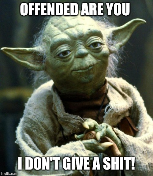 Star Wars Yoda | OFFENDED ARE YOU I DON'T GIVE A SHIT! | image tagged in memes,star wars yoda | made w/ Imgflip meme maker