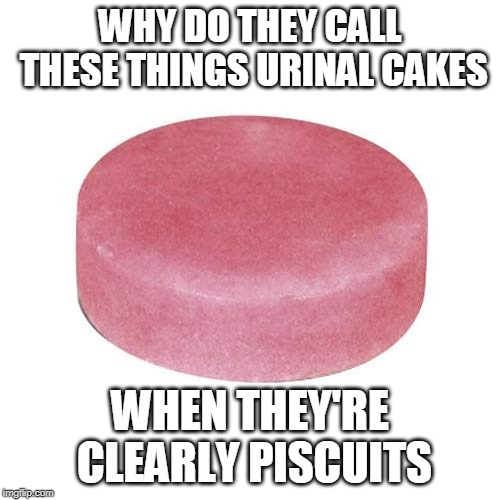 Piss Some Gravy On Your Piscuit | WHY DO THEY CALL THESE THINGS URINAL CAKES WHEN THEY'RE CLEARLY PISCUITS | image tagged in urinal,biscuits,memes,piscuit,urinal cake,piss | made w/ Imgflip meme maker