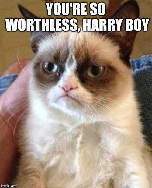 Grumpy Cat Meme | YOU'RE SO WORTHLESS, HARRY BOY | image tagged in memes,grumpy cat | made w/ Imgflip meme maker
